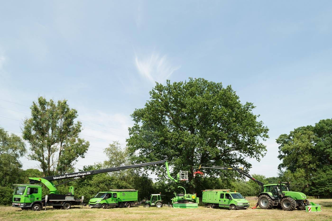 Unser Fuhrpark und unsere Gerätschaften sind auf dem neuesten Stand der Technik. Unter anderem verfügt Bischof-Baumpflege über zwei Traktoren, die je nach Erfordernis eingesetzt werden werden können.